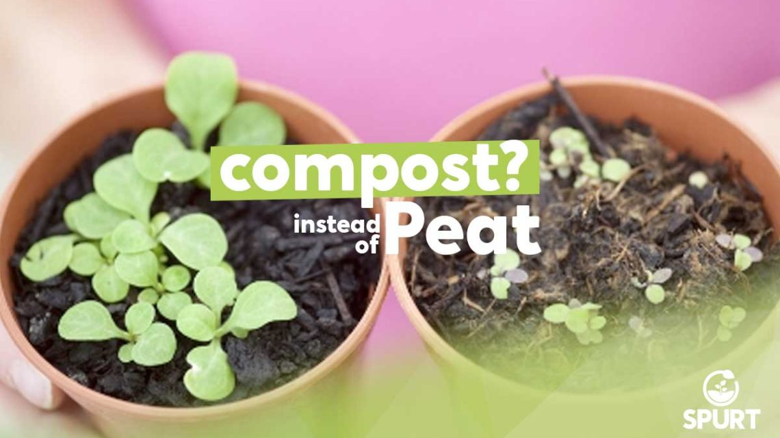 compost Or Peat